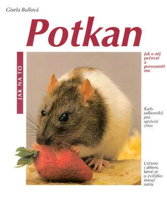 Obrázok Potkan