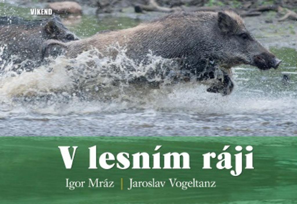 V lesním ráji - Igor Mráz, Jaroslav Vogeltanz