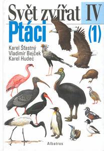 Obrázok Ptáci (1)