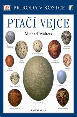 Obrázok Ptačí vejce