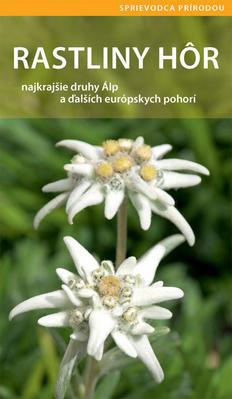 Obrázok Rastliny hôr