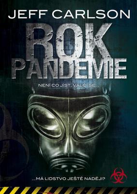 Obrázok Rok pandemie
