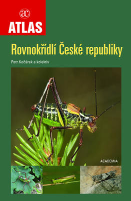 Obrázok Rovnokřídlí České republiky
