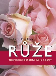 Obrázok Růže