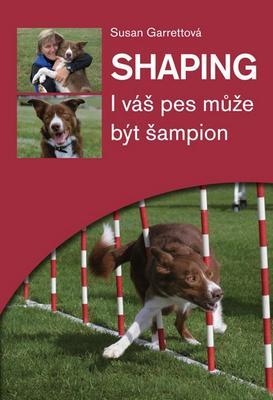 Obrázok Shaping