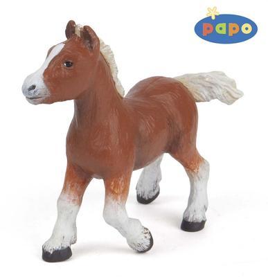 Obrázok Shetlandský kůň