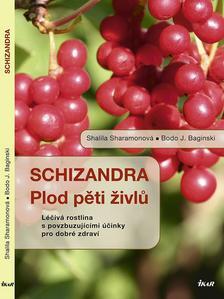 Obrázok Schizandra Plod pěti živlů
