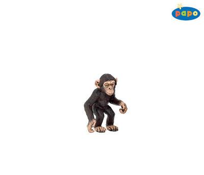 Obrázok Šimpanz mládě
