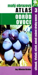 Picture of Slivoně, třešně, višně, méně známe druhy ovoce