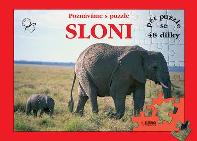 Obrázok Sloni