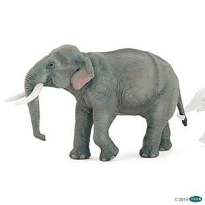 Obrázok Slon indický