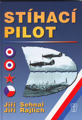 Obrázok Stíhací pilot