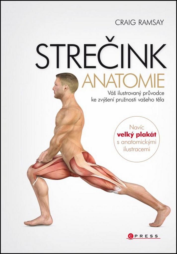 STREČINK Anatomie - Craig Ramsay