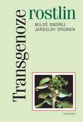 Obrázok Transgenoze rostlin
