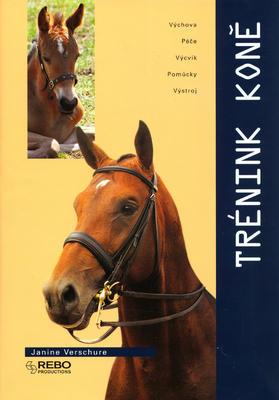 Obrázok Trénink koně