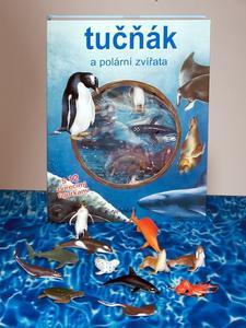 Obrázok Tučňák a polární zvířata