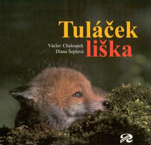 Obrázok Tuláček liška
