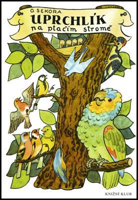Obrázok Uprchlík na ptačím stromě