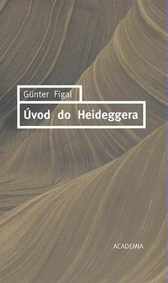 Obrázok Úvod do Heideggera