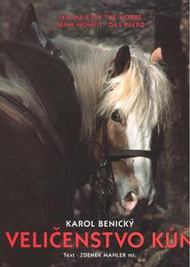 Obrázok Veličenstvo kůň