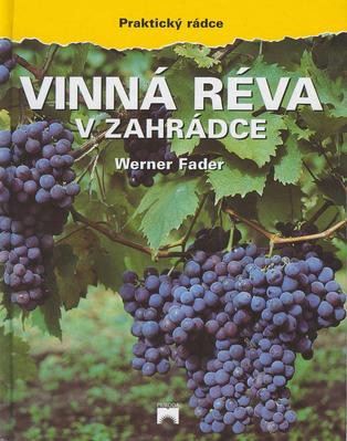 Obrázok Vinná réva v zahrádce