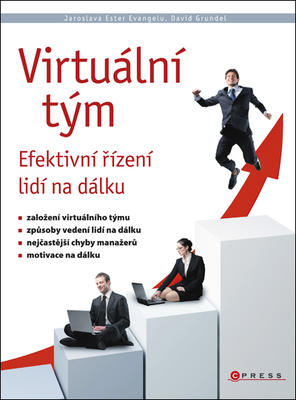 Virtuální tým