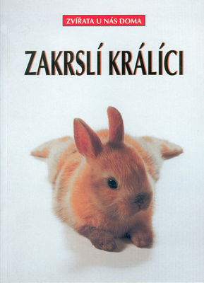 Obrázok Zakrslí králíci