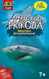 Obrázok Zázračná příroda Mořští živočichové