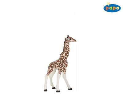 Obrázok Žirafa mládě