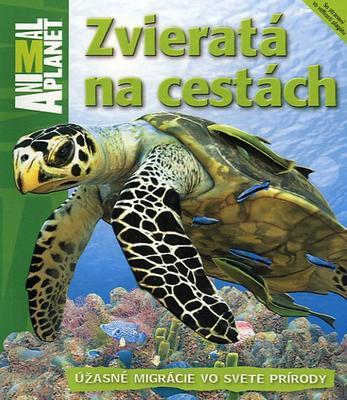 Obrázok Zvieratá na cestách
