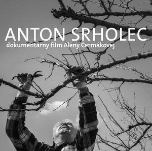 Obrázok Anton Srholec Cesta, po ktorej som išiel