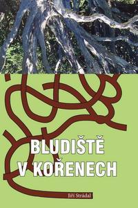 Obrázok Bludiště v kořenech