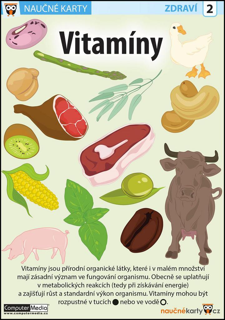 Naučné karty Vitamíny