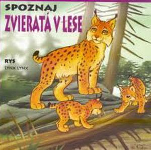 Obrázok Leporelo - Spoznaj  Zvieratá  v lese