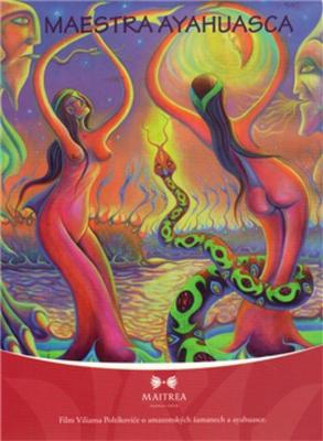 Picture of Maestra ayahuasca