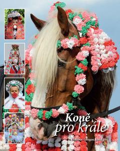 Obrázok Koně pro krále