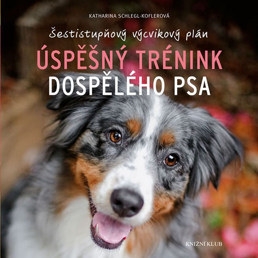 Úspěšný trénink dospělého psa - Katharina Schlegl-Koflerová