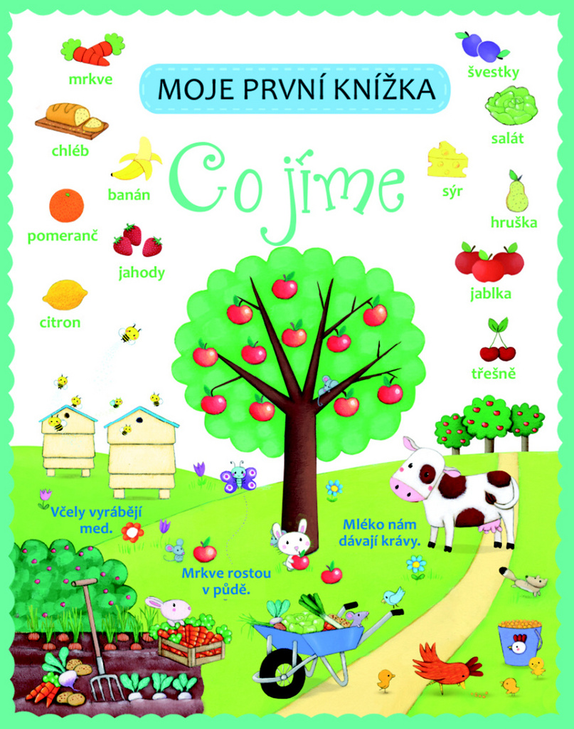 Moje první knížka Co jíme