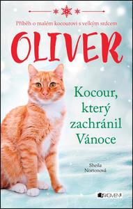 Obrázok Oliver Kocour, který zachránil Vánoce