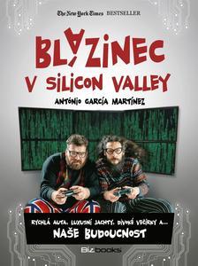 Obrázok Blázinec v Silicon Valley