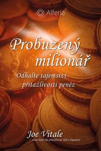 Obrázok Probuzený milionář