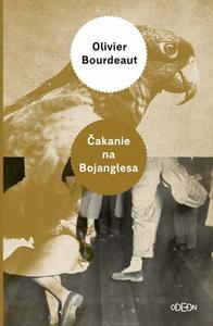 Obrázok Čakanie na Bojanglesa