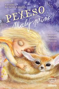Obrázok Pexeso Malý princ