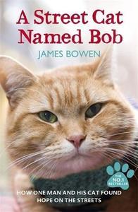 Obrázok A Street Cat Named Bob