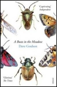 Obrázok A Buzz in the Meadow