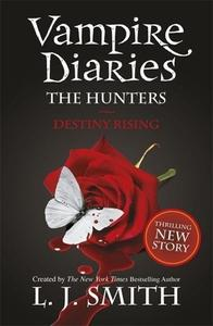 Obrázok The Vampire Diaries - The Hunters 04. Destiny Rising