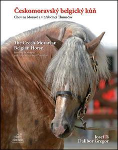 Obrázok Českomoravský belgický kůň