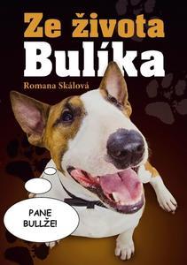 Obrázok Ze života Bulíka