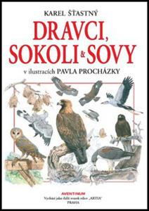 Obrázok Dravci, sokoli a sovy