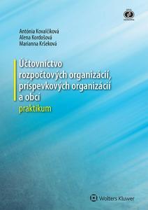 Obrázok Účtovníctvo rozpočtových organizácií, príspevkových organizácií a obcí